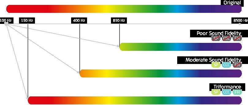 Triformance-Explained